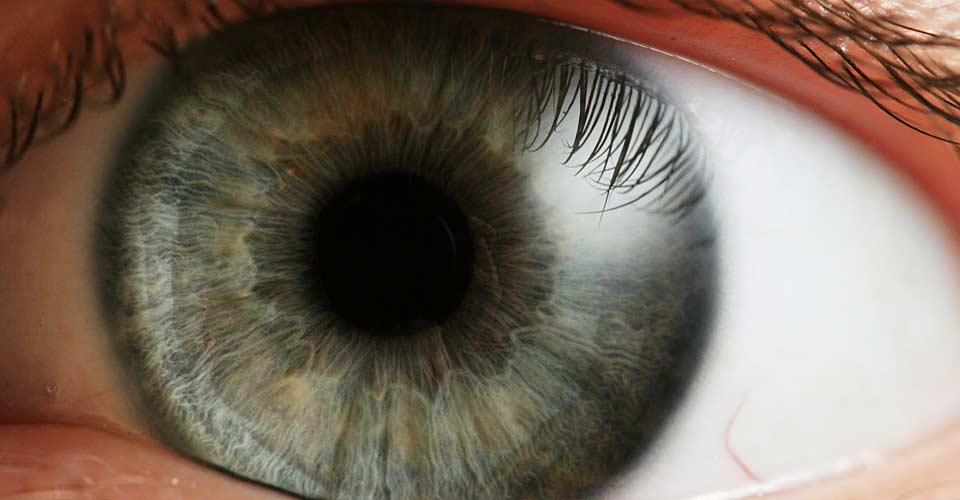 Descubren una nueva capa de la córnea humana de 0.015000mm de espesor